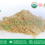 MORINGA-POWDER-03